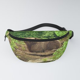 Awe Inspiring Giant Adult Grizzly Bear Observing Photographer In Green Pasture Ultra HD Fanny Pack