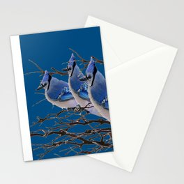 THREE AMERICAN BLUE JAYS ART BLUE WINTER ART Stationery Cards