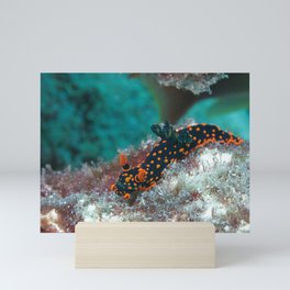 Delightful Nudibranch Mini Art Print
