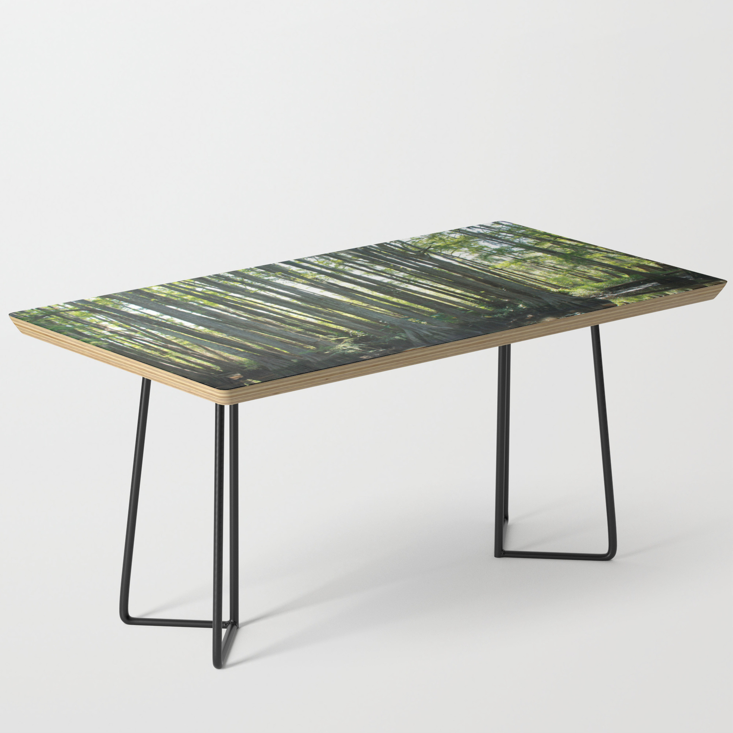 Cypress Trees Coffee Table By Madisondimarco