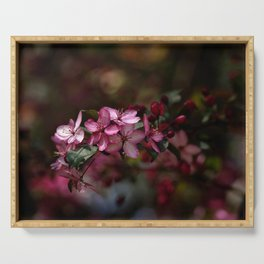 Crab Apple Tree Blossoms Serving Tray