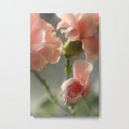 Spring flowers. Metal Print