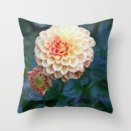 Pale orange dahlia Throw Pillow