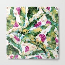 Banana leaf & Pomegranate II Metal Print
