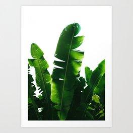 Leaves Green Art Print