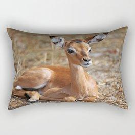 Very young Impala, Africa wildlife Rectangular Pillow
