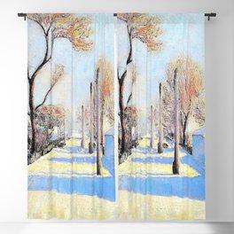 12,000pixel-500dpi - Sava Sumanovic - Sid under Snow - Digital Remastered Edition Blackout Curtain
