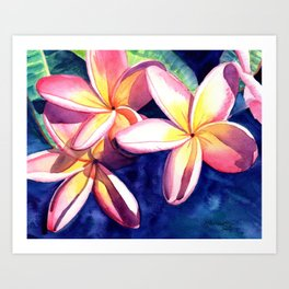 Plumeria Garden 3 Art Print
