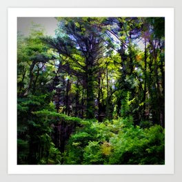 Vine Wrapped Forest Art Print