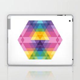 Fig. 023 Laptop & iPad Skin