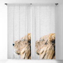 Lion Portrait - Colorful Blackout Curtain