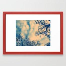 Treevision Framed Art Print