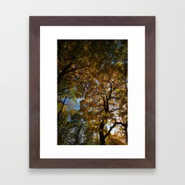 KC Fall Framed Art Print
