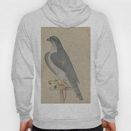 Falcon - 18th Century Classical Indian Art Hoody