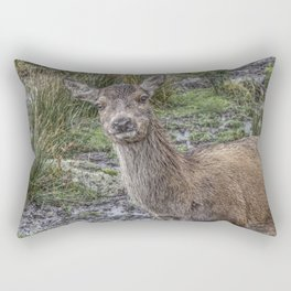 Wild deer in Scotland Rectangular Pillow