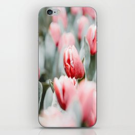 Pink Tulip Bulbs In A Field Green Leaves iPhone Skin