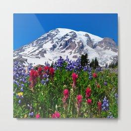 Mt. Rainier Skyline Trail, Mt. Rainier National Park Metal Print