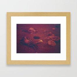 La Inmortalidad del Cangrejo Framed Art Print