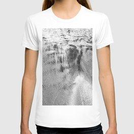Fine sand details 2 T-shirt