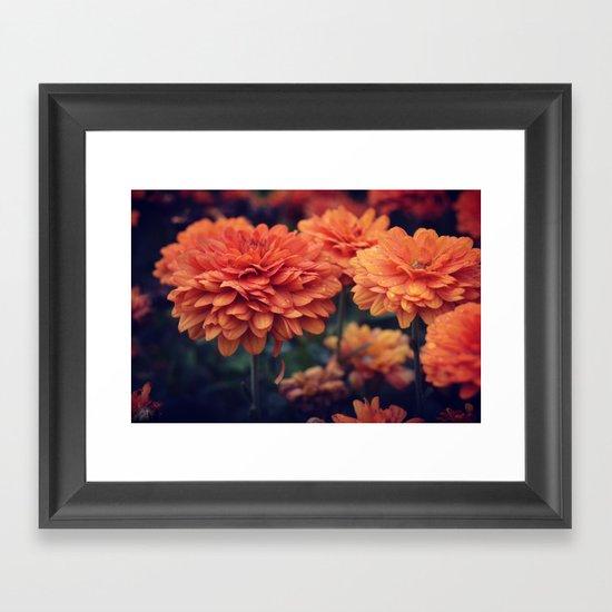 Sweet Orange Framed Art Print