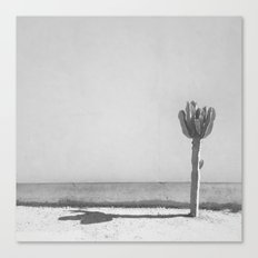 Cactus - in Black & White Canvas Print