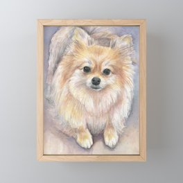 Pomeranian Watercolor Pom Puppy Dog Painting Framed Mini Art Print