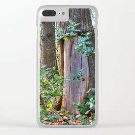 Portal To Wonderland Clear iPhone Case