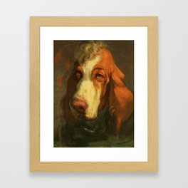 Bracco Italiano Framed Art Print