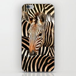 Portrait Of A Zebra - Modern Wildlife Photography Art iPhone Skin