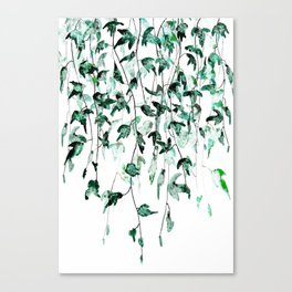 Ivy on the Wall Canvas Print