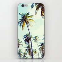 palm iPhone & iPod Skins featuring Palm by Sol&Co