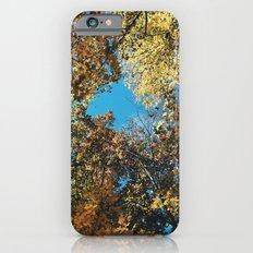 Autumn II Slim Case iPhone 6s