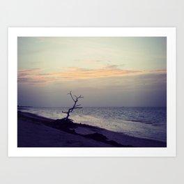 Sunset on Coco Plum Beach Art Print