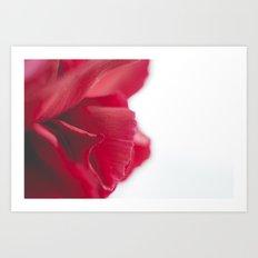 Love Twist Art Print