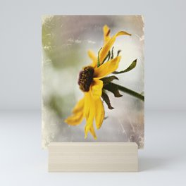 Rudbeckia Mini Art Print