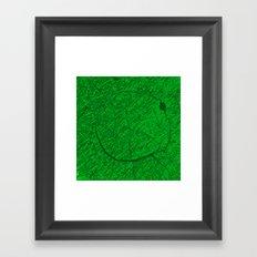 QASD213 Framed Art Print