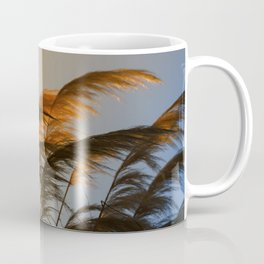 Sunset in autumn. Pampa grass Coffee Mug