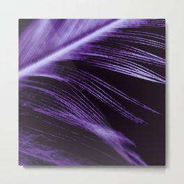 Purple Feather close up Metal Print