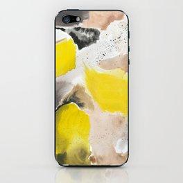 September Morning on the Island iPhone Skin