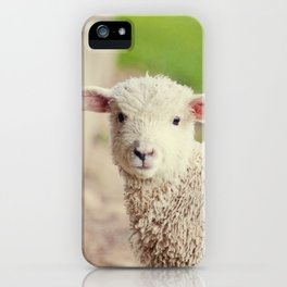 Little Lamb I iPhone Case