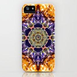 Sun Mandela iPhone Case
