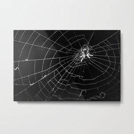 The monster on the web Metal Print