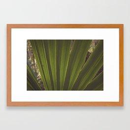 Tropical Dreams Framed Art Print