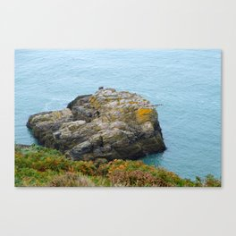 Sea and stone  Canvas Print