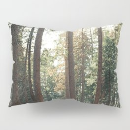 Hiker Girl In Giant Forest Photography Pillow Sham