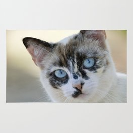 Tortoiseshell cat portrait Rug