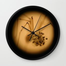 Skull Spider with Spiderlings Wall Clock