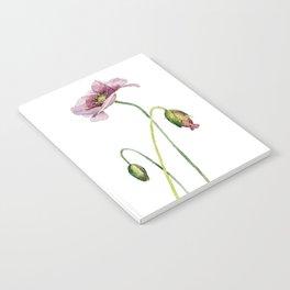 Purple poppy Notebook