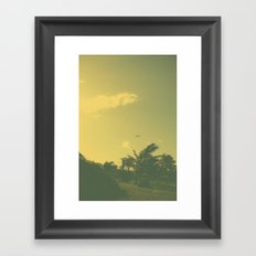 Hawaii Plane - Maui Framed Art Print