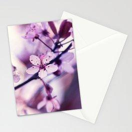 Cherry Blossom - Beautiful Sakura Flower Stationery Cards